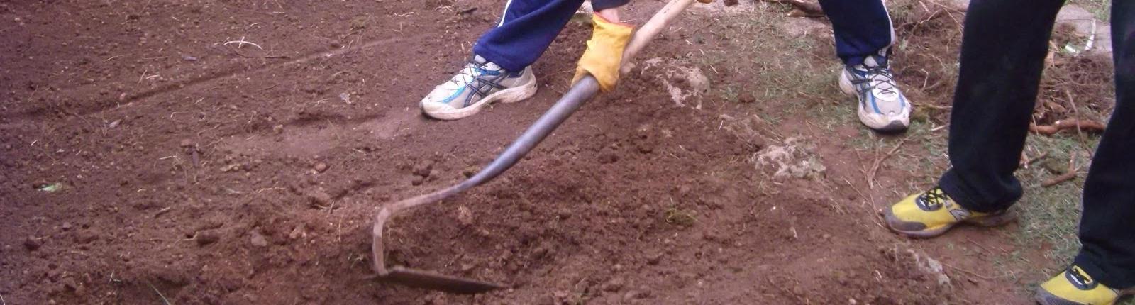 Herramientas del jardinero para preparación del terreno