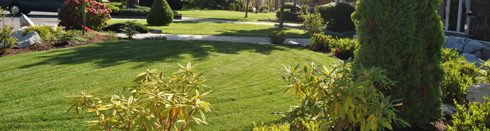 Servicio Jardinería: Puesta a punto de tu casa de veraneo