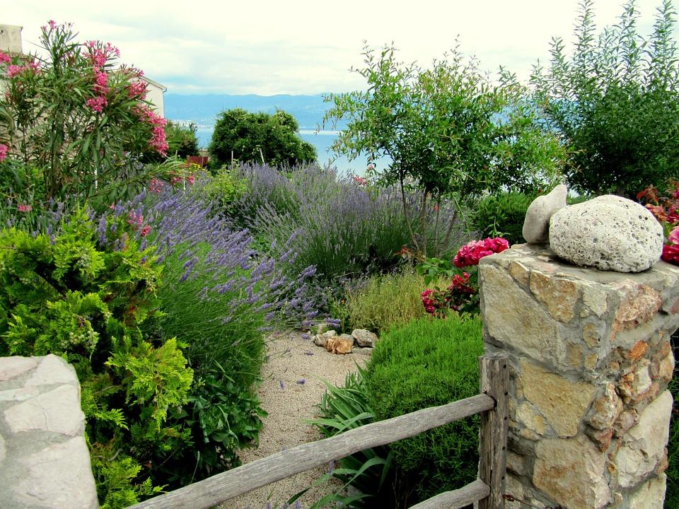 plantas jardim mediterraneoUn jardín adaptado al clima mediterráneo