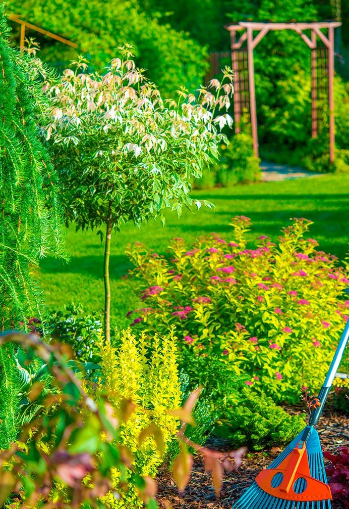 empresa jardineria sevilla