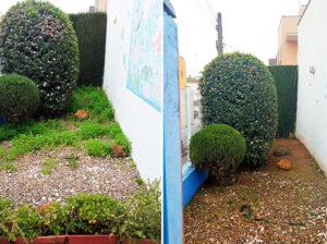 jardineros podas sevilla