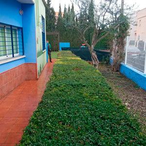 jardineros para comunidades y urbanizaciones